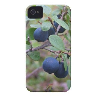 Case mate selvagem do iPhone 4 das bagas Capa Para iPhone 4 Case-Mate