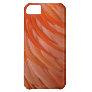 Casemate da pena do flamingo do iPhone 5 Capa Para iPhone 5C
