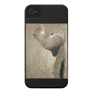 Caso corajoso com fome de Horatio Blackberry do Capinhas iPhone 4