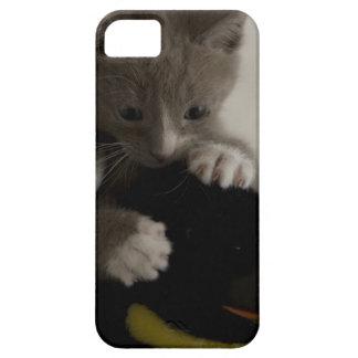 caso do iPhone 5 com o gatinho que guardara o
