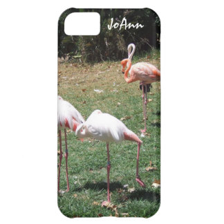 Caso do iPhone 5 da fotografia do flamingo Capa Para iPhone 5C