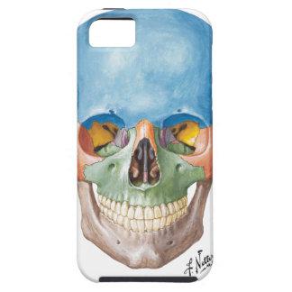 Caso do iPhone 5 do crânio do Netter Capas Para iPhone 5