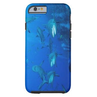 Caso do iPhone 6 do tubarão do recife Capa Tough Para iPhone 6
