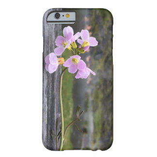 Caso floral de iphone/ipad capa barely there para iPhone 6