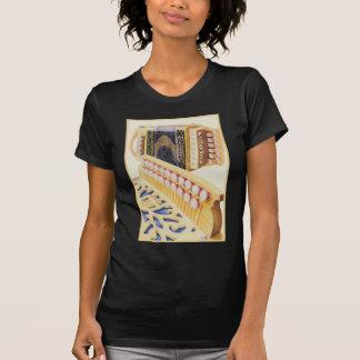 Castagnari Melodeons Camisetas