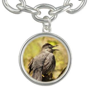 Catbird cinzento que canta seu bracelete do
