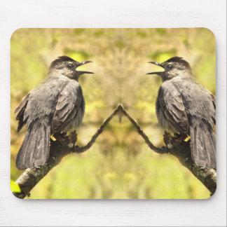 Catbirds cinzentos do canto Mousepad