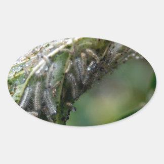 Caterpillar choca a queda da chuva do casulo adesivo oval