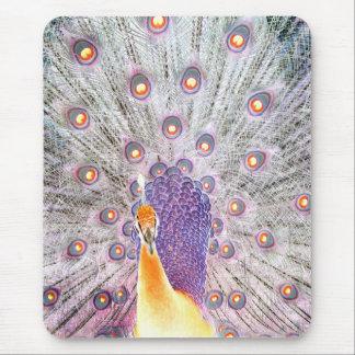 Cauda do pavão e foto de cores invertida cabeça mouse pad