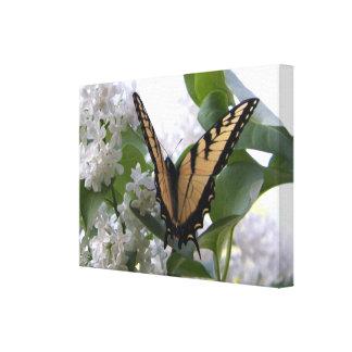 Cauda oriental da andorinha do tigre no Lilac Bush Impressão Em Tela