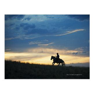 Cavaleiro de Horseback 15 Cartão Postal