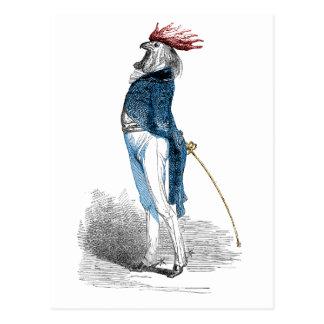 Cavalheiro do galo cartões postais