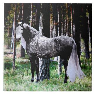 """Cavalo azulejo na floresta"""