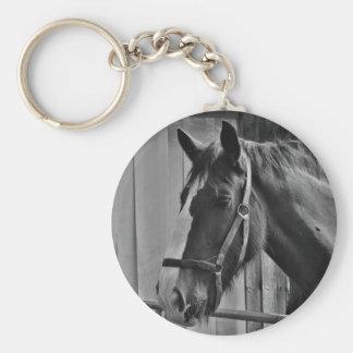 Cavalo branco preto - arte animal da fotografia chaveiro