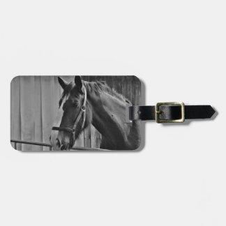 Cavalo branco preto - arte animal da fotografia etiqueta de bagagem