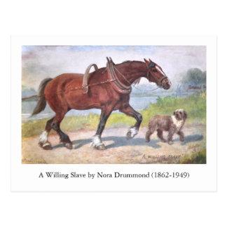 Cavalo da barca do canal e cartão do cão
