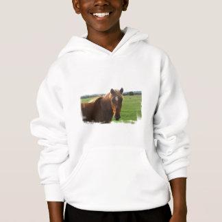 Cavalo da castanha com uma camisola das crianças