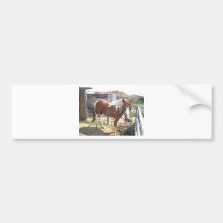Cavalo da pintura da aguarela adesivo para carro
