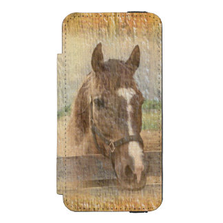 Cavalo de Brown com a cabeçada na madeira velha