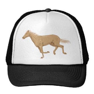 Cavalo de corrida bones