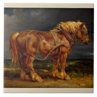 Cavalo de esboço belga