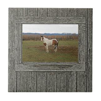 Cavalo de madeira velho da pintura da janela