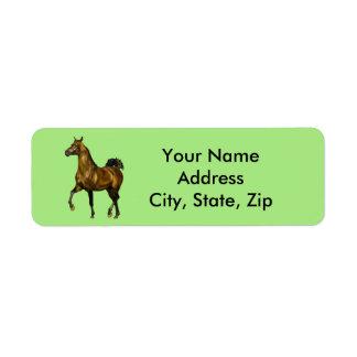 Cavalo do Arabian da baía Etiqueta Endereço De Retorno