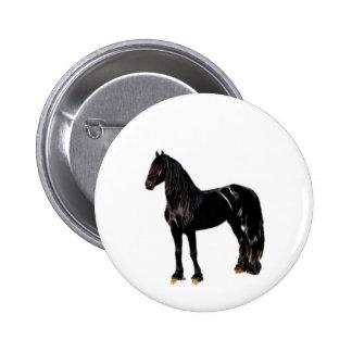 Cavalo do campeão boton