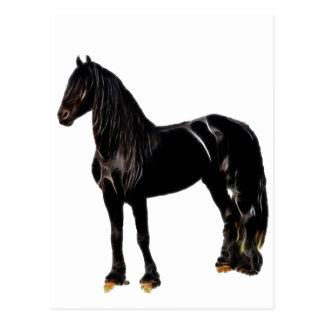Cavalo do campeão cartão postal