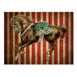 cavalo do circo do vintage cartao postal