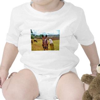 Cavalo do coelhinho da Páscoa e do Brown Macacãozinho Para Bebê