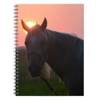 Cavalo do nascer do sol cadernos
