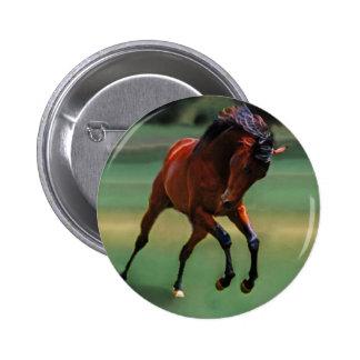 Cavalo do rodeio para o vaqueiro boton