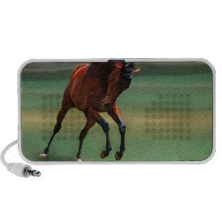 Cavalo do rodeio para o vaqueiro caixinhas de som para pc
