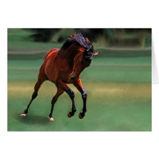 Cavalo do rodeio para o vaqueiro cartão comemorativo