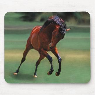 Cavalo do rodeio para o vaqueiro mouse pads