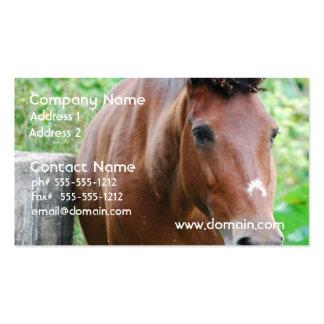 Cavalo doce de Paso Fino Modelo Cartoes De Visitas