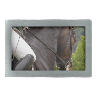 Cavalo Dressage