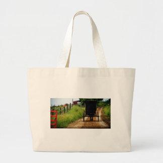 Cavalo e carrinho de Amish