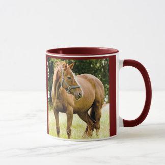 Cavalo (égua) na caneca do campo