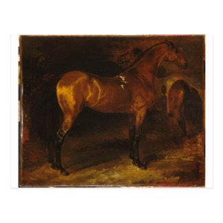 Cavalo espanhol em um estábulo por Theodore Cartão Postal