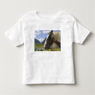 Cavalo, Gap de Dunloe, Kerry do condado, Ireland Tshirts