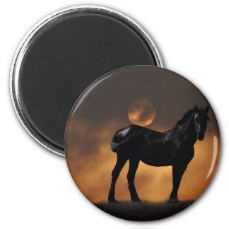 Cavalo majestoso imas de geladeira