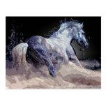 Cavalo na ação cartões postais