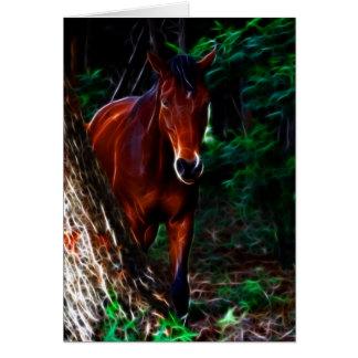 Cavalo na floresta cartões