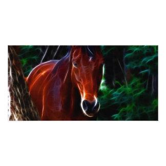 Cavalo na floresta cartão com foto