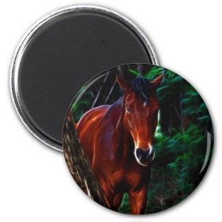 Cavalo na floresta imãs
