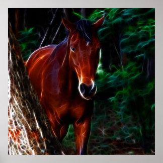 Cavalo na floresta posteres