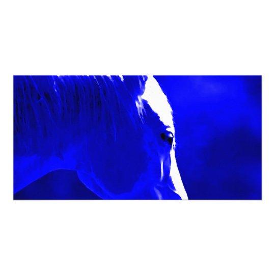 Cavalo na noite - cavalo no luar cartão com foto