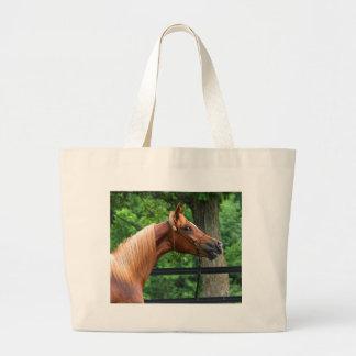 Cavalo nacional da mostra bolsa para compra